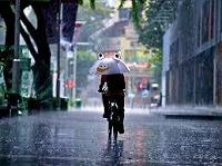 mecan rain